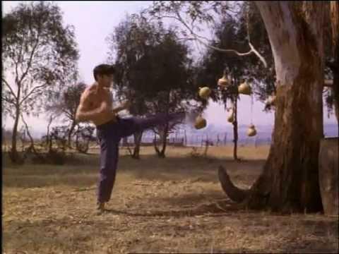 mark dacascos training in kickboxer 5