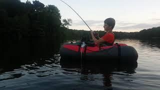 Catfish On/ Wallerdrill Beim Klopfen Vom Bellyboat