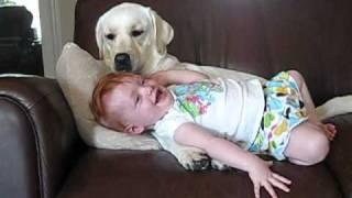 If you like cute dog & baby stuff, you