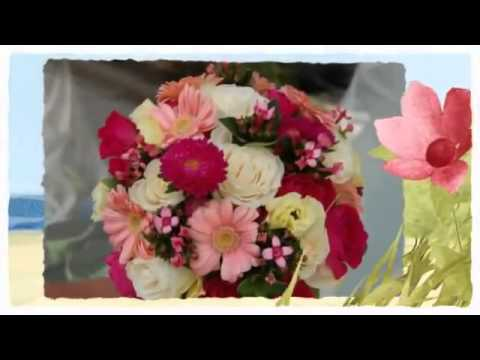 Havertown PENNSYLVANIA FLORIST