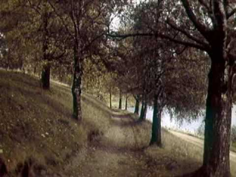 Харуки Мураками Норвежский Лес