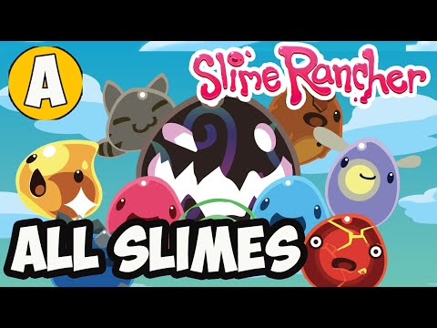 Slime Rancher All slimes in (2021)