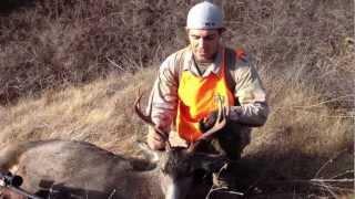 S&S WA Mule Deer 2012