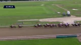 Vidéo de la course PMU QATAR GRAND HANDICAP DES JUMENTS