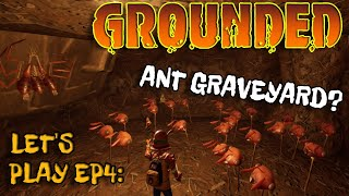 KILLING A WOLF SPIDER! And An Ant Graveyard! - Grounded - Gameplay and Commentary - Episode 4