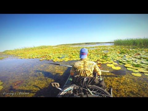 Рыбалка на щуку в зарослях кувшинки. Разведка щучьих мест. Вело-водный поход.
