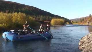 видео река Аляска