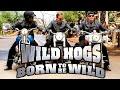 Ac Dc Born To Be Wild