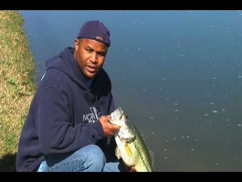 How To Fish - A Basic Instructional Guide On Freshwater Fishing