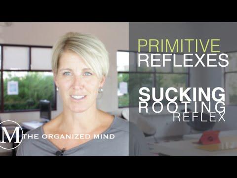 Primitive Reflex - Sucking/Rooting Reflex