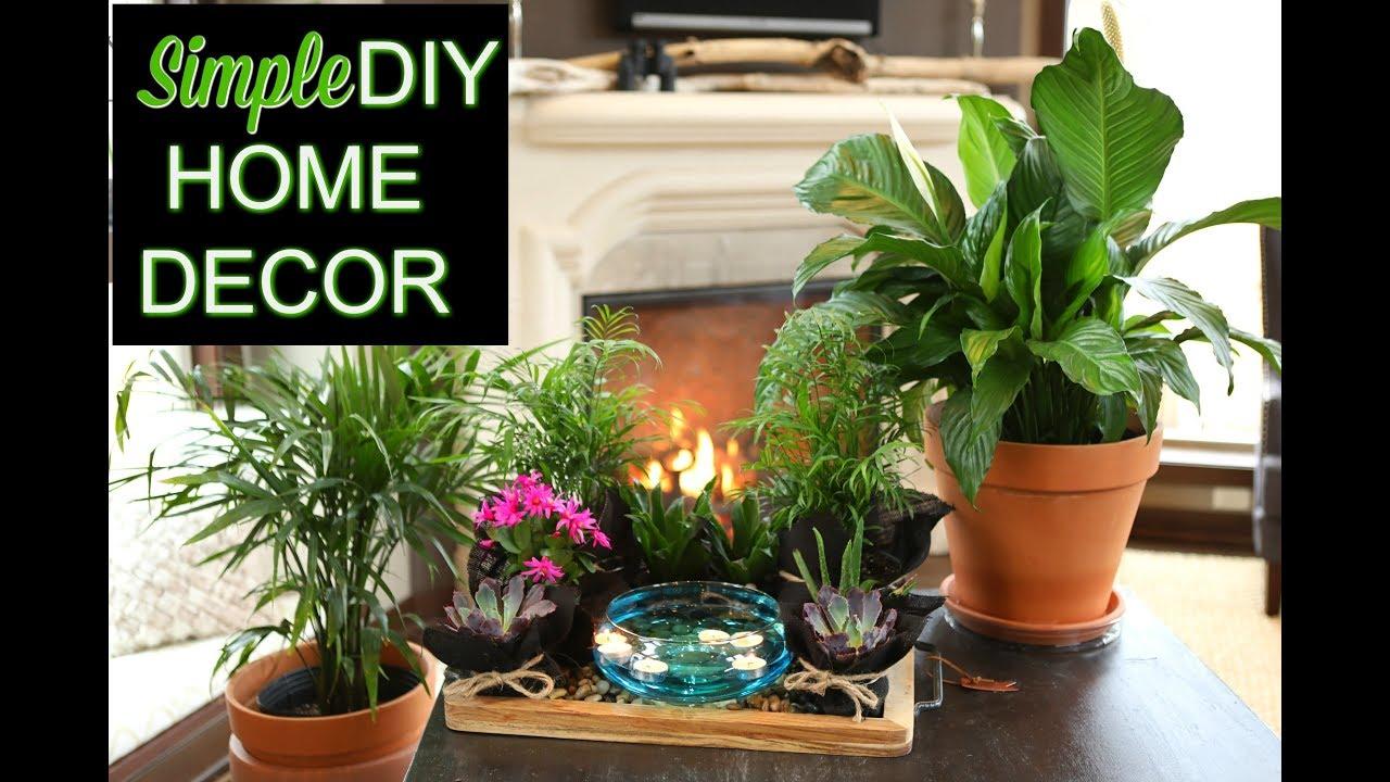 Simple DIY Home Decor   \'The Plant Platter\'   Indoor Gardening - YouTube