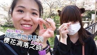 #Vlog09 櫻花凋零之時(葉櫻上集)♫路痴遊世界