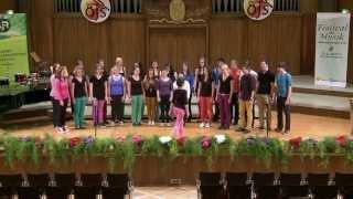 Kärntner Landesjugendsingen 2013 | Schulchor der HLW St Peter