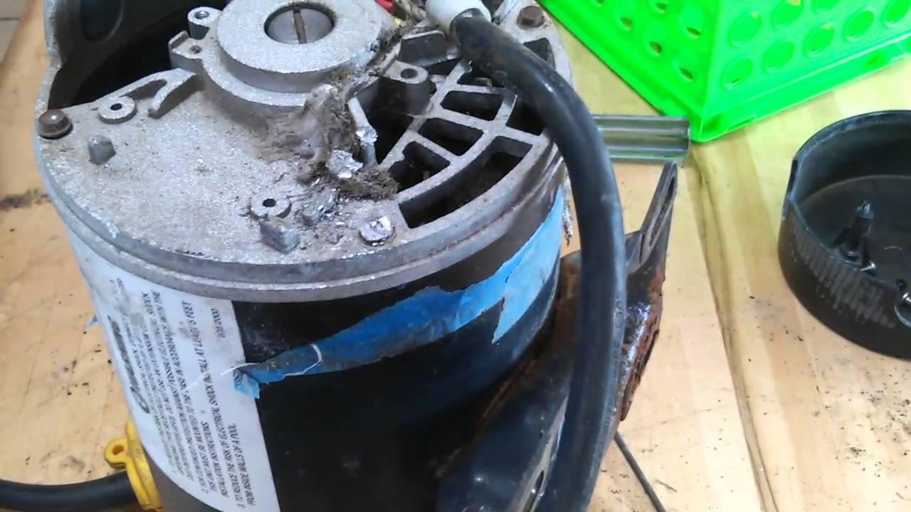 Proline Pool Pump Troubleshooting Part 005