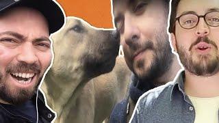 3 Gün Sokak Hayvanlarını Besle! - Vloglu Kapışma