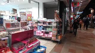 JAPAN VLOG★시즈오카역에서 시즈오카현청앞 루미나…