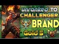 Unranked to Challenger Support Brand Gold 5