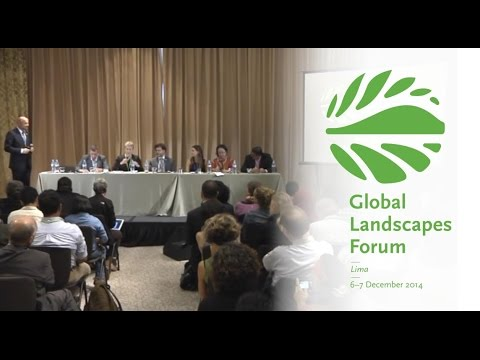 New findings on the dynamics between forests, land use and food security