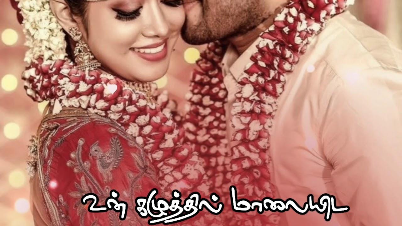 Girls love feeling status 💕 female version love song ...