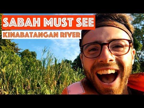 SABAH MUST SEE: KINABATANGAN RIVER || TRAVEL MALAYSIA