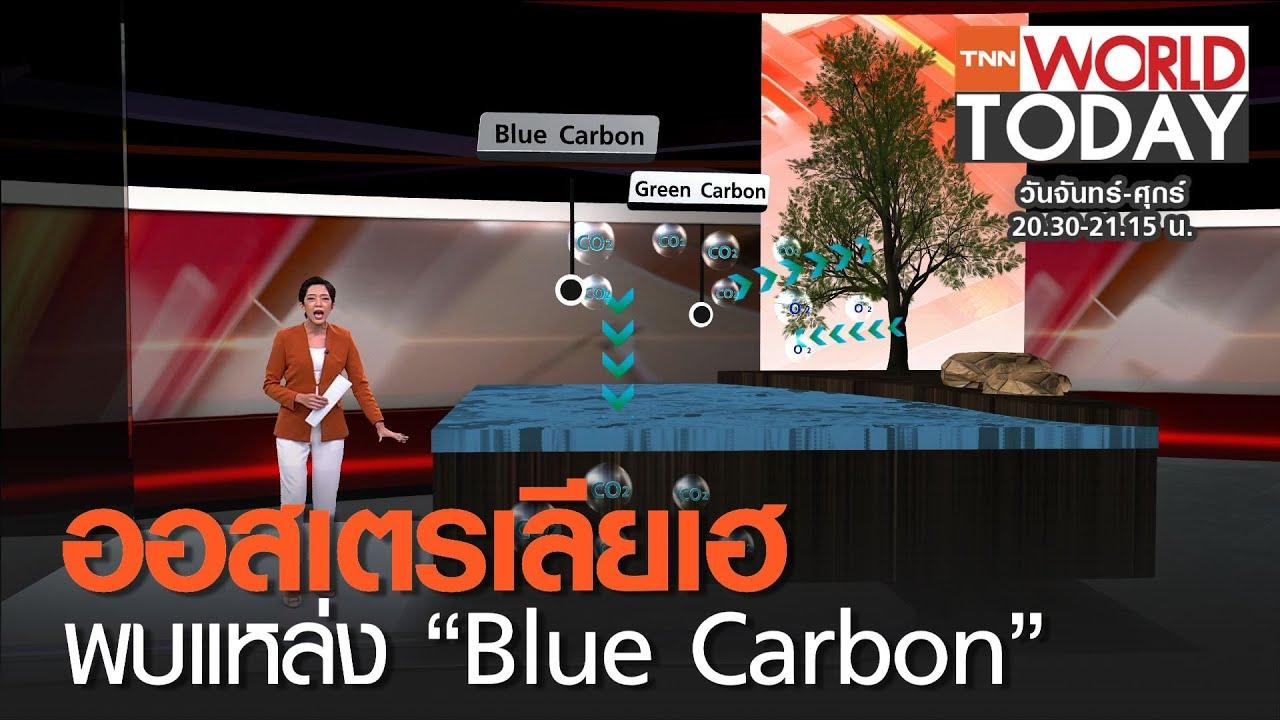 """ออสเตรเลียเฮ พบแหล่ง """"Blue Carbon""""  l TNN World Today"""