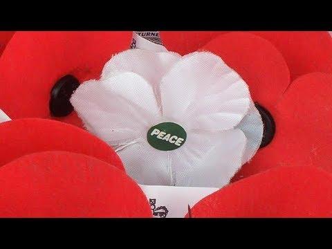 Why a white poppy ?
