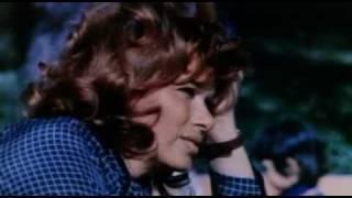 El perro pelicula 1976
