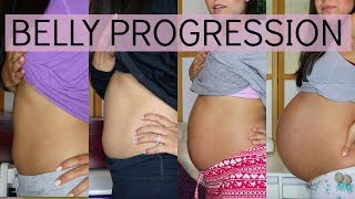 PREGNANCY BELLY PROGRESSION // FIRST BABY