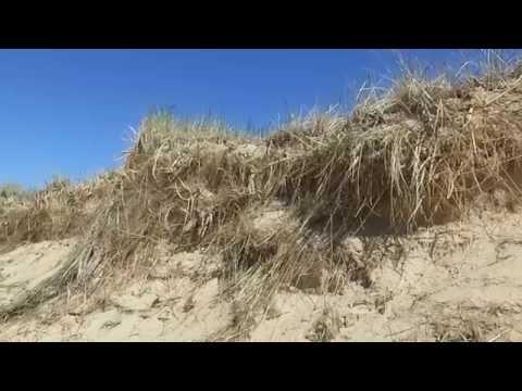 Exploring The Dunes of Sandy Hook In The Magdalen Islands