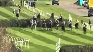 Британский Забег Года 2011 Конные Скачки (Гандикап Chase)