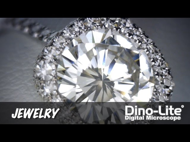 Dino-Lite Applications: Jewelry