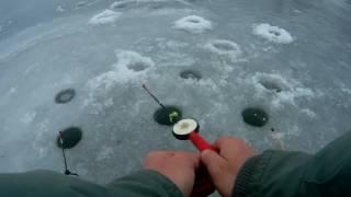 Вот и ЛЕД! Зимняя рыбалка на мормышку и блесну