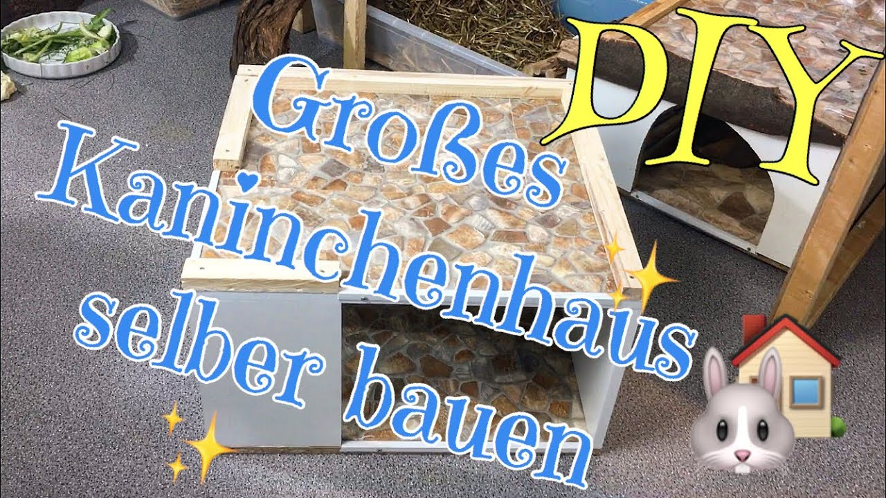 Grosses Kaninchenhaus Selber Bauen Diy Youtube