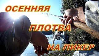 Осенняя ловля плотвы на пикер Волжанка Оптима 3 0м25 Белое озеро