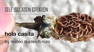 mateo dupleich, hola casita   Self Isolation Creation