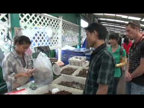 Documentaire entomophagie  |  bugs-to-eat.com