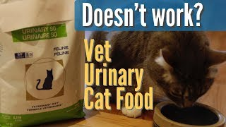 Don't Feed 'Veterinary Diet' for Urinary Disease in Cats?