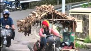 BabyHoey Scooter Tua