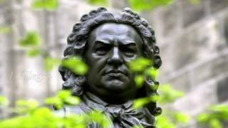 Bach - Brandenburg Concerto No. 1 In F Major, BWV 1046