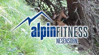 Tiere der Alpen #1 / Animals of the Alps #1 / Les animaux des Alpes #1 (2013)