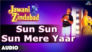 Jawani Zindabad : Sun Sun Sun Mere Yaar Full Audio Song | Aamir Khan, Farah Khan |