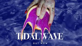 Chase Atlantic - Tidal Wave (Lyric Visual)