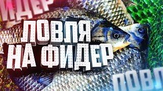 Рыбалка Ловля карася летом Летняя рыбалка Прикормка Снасти Насадки