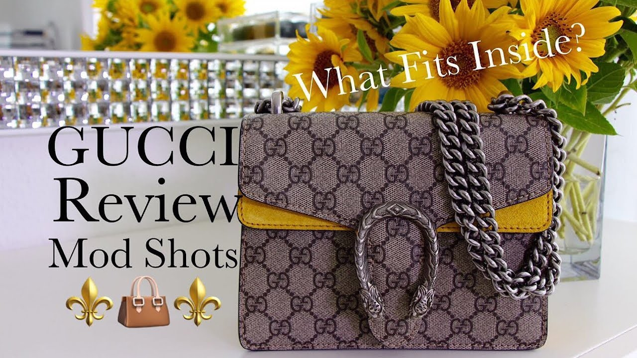 ee04365bcfac What Fits Inside? Gucci Dionysus GG Supreme Mini Bag | Mod Shots ...