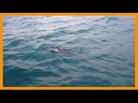 [Holland News] Dutch athlete swims across english channel twice in a row