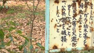 【あなゆき】泉大津散歩★あなたにあいたくて・・・【旅の扉】 thumbnail