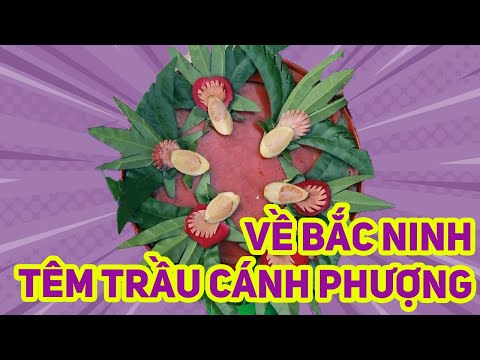 Trầu Têm Cánh Phượng Bắc Ninh