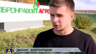 Край Брянский -  Навлинский район 13 11 17