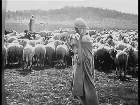 Les Juifs à Laghouat - Au commencement, il était une fois des juifs arabes