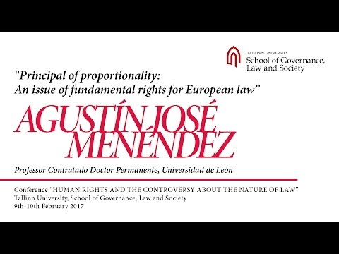 Agustín Menéndez - Principal of Proportionality: An Issue of Fundamental Rights for European Law